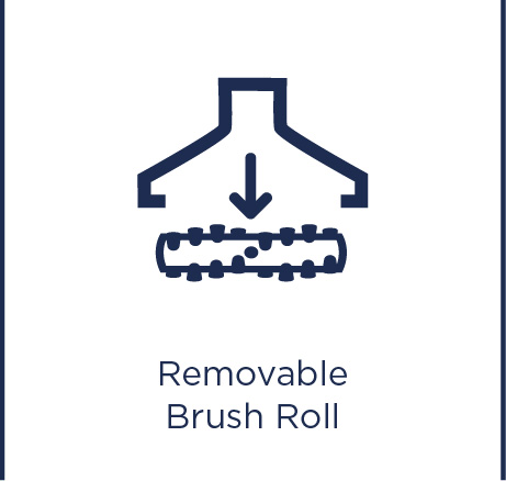 Removable brush roll